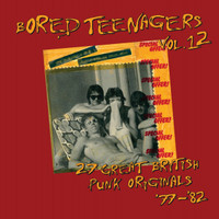 BORED TEENAGERS  Vol 12 - 27 Great British Punk Originals-  COMP CD