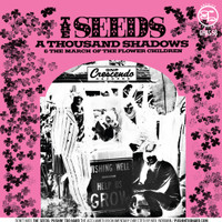 SEEDS - A THOUSAND SHADOWS/MARCH OF THE FLOWER CHILDREN  45 RPM