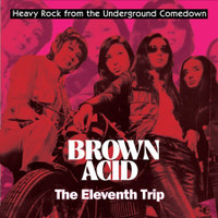 BROWN ACID   -THE 11th  TRIP (HEAVY ROCK FROM THE UNDERGROUND COMEDOWN) COMP CD