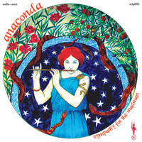 ANACONDA  -Sympathy For the Madman (1969 post-Arcadium psychedelic folk masterpiece)  LP