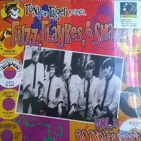 FUZZ, FLAYKES & SHAKES  60 Miles -High Garage Punk, Electric Folk & Psychedelic Wonders-  COMP LP