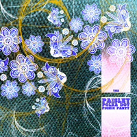 PAISLEY POLKA DOT PICNIC PARTY - VA (60 garage psych from the Medway scene)COMP CD