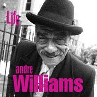 WILLIAMS, ANDRE - Life - smoke-ringed guitars, Stax-worthy bass, distant reverb)CD