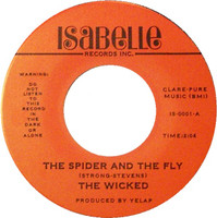 WICKED - This Diamond Ring /  Spider and the Fly  ( 1979 Super rare garage W LENNY KAYE! ) No slv -  45 RPM
