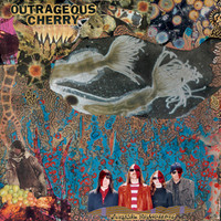 OUTRAGEOUS CHERRY -Universal Malcontents (great 70 style psych pop) CD