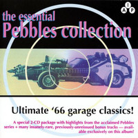 ESSENTIAL PEBBLES Vol. 1 ( LAST COPIES!) Ultimate '66 garage classics DBL CD