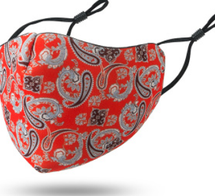 Red Paisley Adult Face Mask