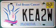 2008 Sep Florida End Breast Cancer License Plate