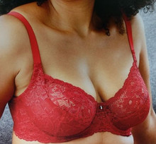 MN9323 Fashion Lace Divine Underwire Bra - Sweet Red