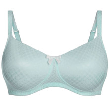 AN5762  Mint Caroline Post Mastectomy  Softcup bra by Anita