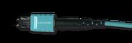 MTP PRO® OM3 Fiber Optic Jumper