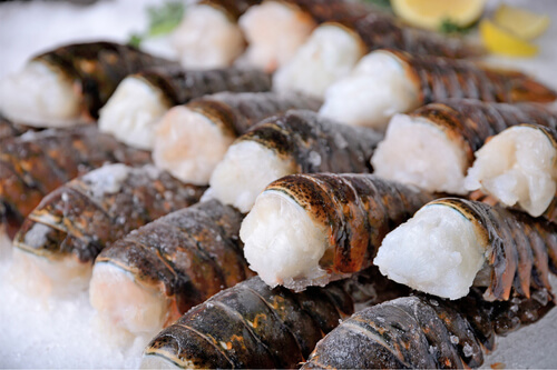 A batch of frozen lobster tails