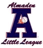 Almaden Little League Clinics