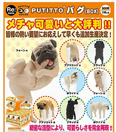 PUTITTO series - Pug 12 Pcs Box