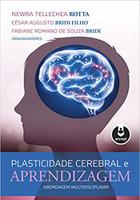Plasticidade Cerebral e Aprendizagem: Abordagem Multidisciplinar (Português)
