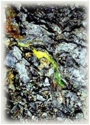 Orvil Jack Lime Turquoise Vein