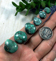 49 carats Natural Damele Variscite Cabochon Lot