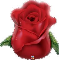 "33"" Red Rose Bud - Flat Shape"