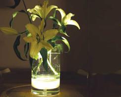 Bloom - Illuminated vase (ex-display)