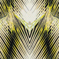 17002 - Roberto Cavalli 6 Kaleidoscope Motif Black Beige Ecru Yellow Wallpaper