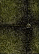 17034 - Roberto Cavalli 6 Leather Upholstery Olive Green Wallpaper