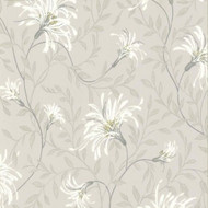 1601-101-01  - Rosemore Daisy Floral Trails Grey White Yellow 1838 Wallpaper