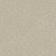 SH00619 - Sahara Raised Crystal Beads Champagne Blendworth Wallpaper