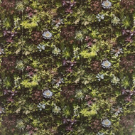 G45388 - Evergreen Photographic Foliage Green Lilac Galerie Wallpaper Mural