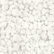 7317 - Evergreen Mottled Abstract Design Smoky Grey Galerie Wallpaper