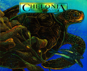 Chelonia: Return of the Sea Turtle