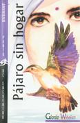 Pájaro sin hogar - Homeless Bird