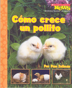 Cómo crece un pollito - Chick Grows Up