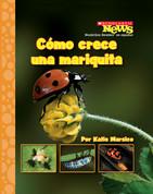 Cómo crece una mariquita - Ladybug Larva Grows Up