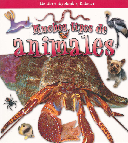 Muchos tipos de animales - Many Kinds of Animals