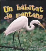 Un hábitat de pantano - A Wetland Habitat
