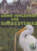 Cómo funcionan los ecosistemas - How Ecosystems Work