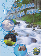 El maravilloso ciclo del agua - The Wonderful Water Cycle