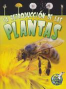 La reproducción de las plantas - Reproduction in Plants