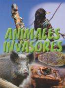 Animales invasores - Animal Invaders