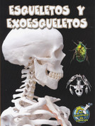 Esqueletos y exoesqueletos - Skeletons and Exoskeletons