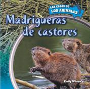 Madrigueras de castores - Inside Beaver Lodges
