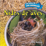 Nidos de aves - Inside Bird Nests