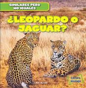 ¿Leopardo o jaguar? - Leopard or Jaguar?