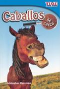 Caballos de cerca - Horses Close Up