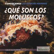 ¿Qué son los moluscos? - What Are Mollusks?