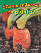 ¿Cómo se forma una planta? - What Makes a Plant?
