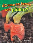 ¿Cómo se forma una planta? - What Makes a Plant?