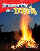 Conservación de la masa - Conservation of Mass