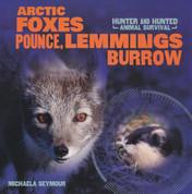 Artic Foxes Pounce, Lemmings Burrow