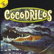 Cocodrilos - Crocodiles